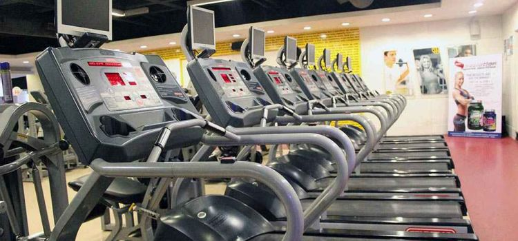Gold's Gym-Malleswaram-2119_cncbsd.jpg