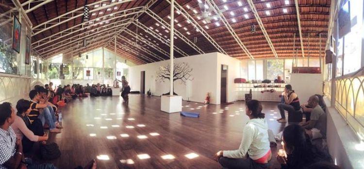 Total Yoga-Koramangala-2241_n1gwo6.jpg