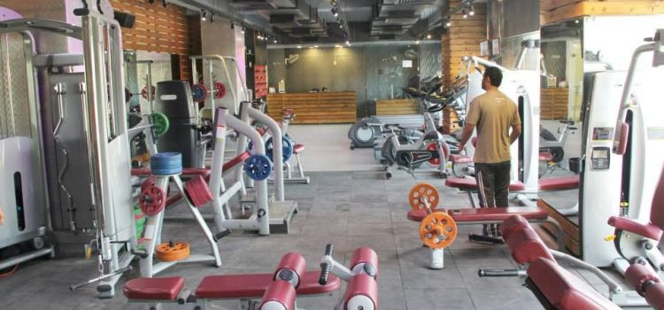 The Gym Health Planet-Gurgaon Sector 14-2902_qqbusc.jpg