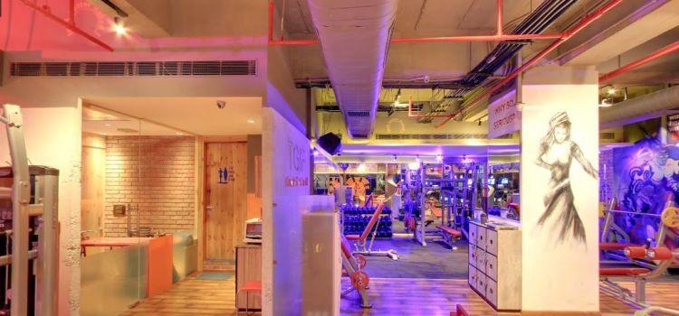 The Gym Club-Gurgaon Sector 49-4027_olir6a.jpg