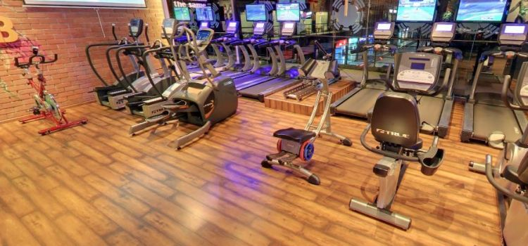 The Gym Club-Gurgaon Sector 49-4029_vvfle6.jpg