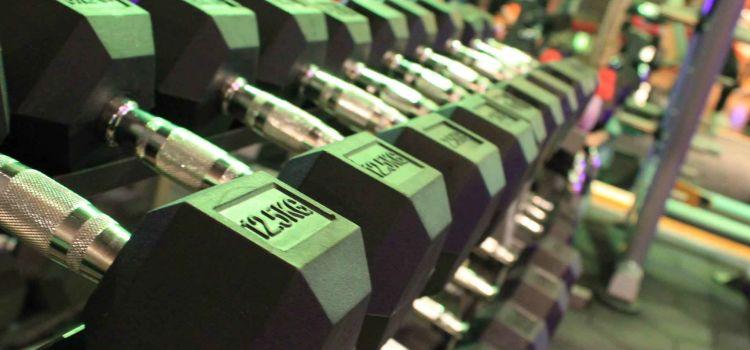 The Gym Club-Gurgaon Sector 49-4040_vwzvm3.jpg