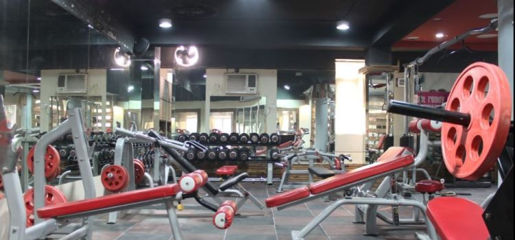 Pushup Gym N Spa-Dwarka-4195_lnriyd.jpg
