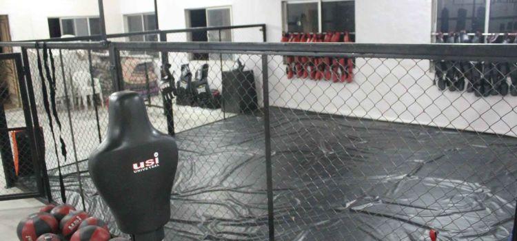 Knockdown-Vashi-4800_dzhwfo.jpg