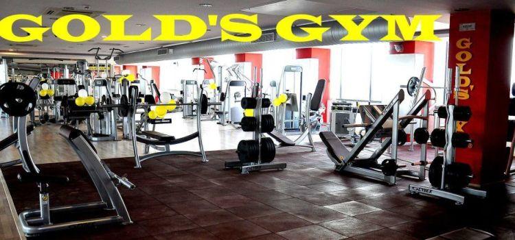 Gold's Gym-Adyar-4809_kdxovd.jpg