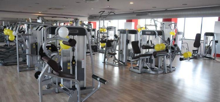 Gold's Gym-Adyar-4811_anvghz.jpg