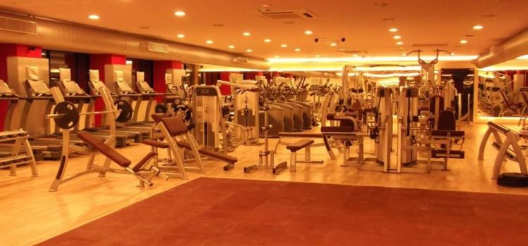 Gold's Gym-Adyar-4812_gzkirs.jpg