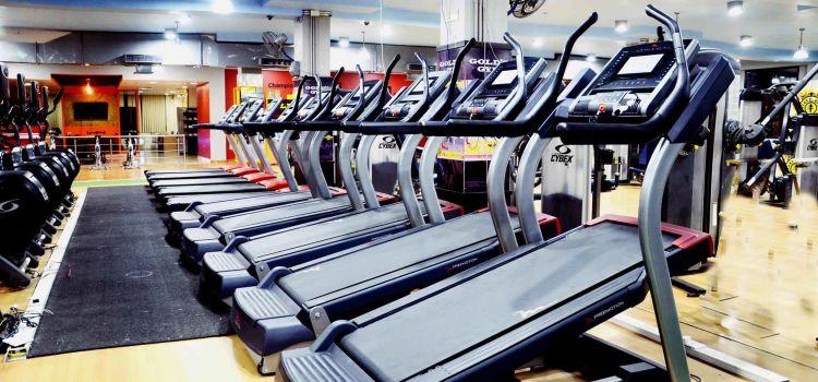 Gold Gym-S A S Nagar-5500_vcykwa.jpg