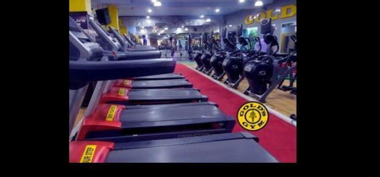 Gold Gym-S A S Nagar-5506_xa9twd.jpg