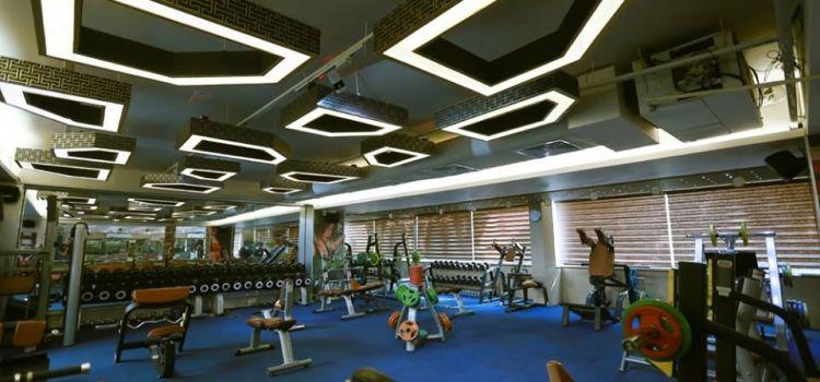 Ozi Gym & Spa-Sector 40-5621_auy8l9.jpg