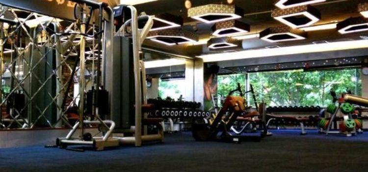 Ozi Gym & Spa-Sector 22-5630_apglst.jpg