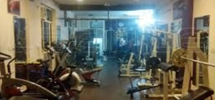 Pro Power Gym-Sector 35-5763_pmvzwt.jpg
