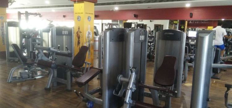 Gold's Gym-Sector 16-5937_anxsz6.jpg