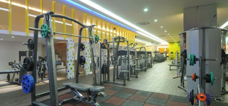 Zeus Fitness Point -Prahlad Nagar-6451_xlfqsi.jpg