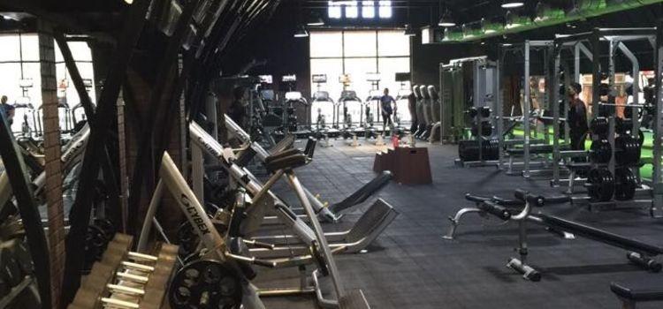 Rush Fitness-Alipore-6994_qfaw3j.jpg