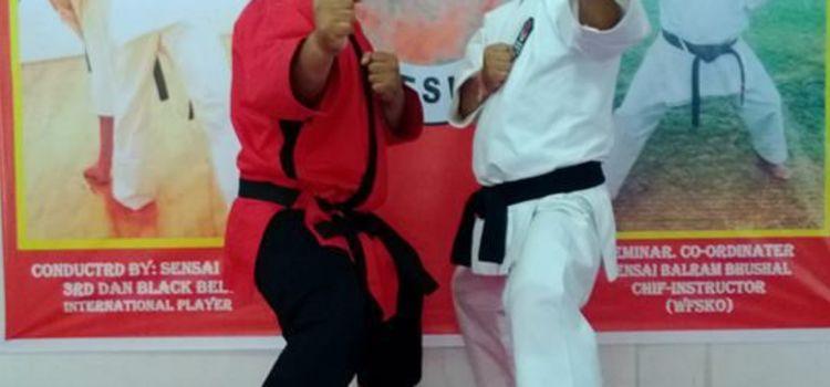 Abin Karate & Kick Boxing Institute-DLF Phase 3-7043_gsxoj6.jpg