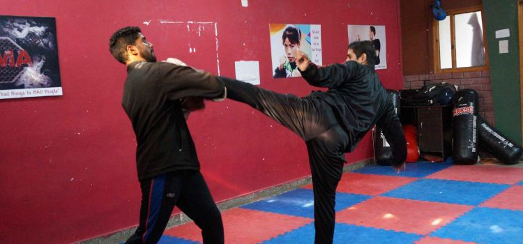 The Kings Academy of Martial Arts-Sector 22-8021_hhd7e9.jpg