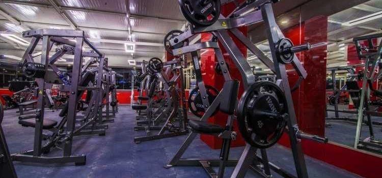 Hammer Fitness-HSR Layout-8236_c2pyez.jpg