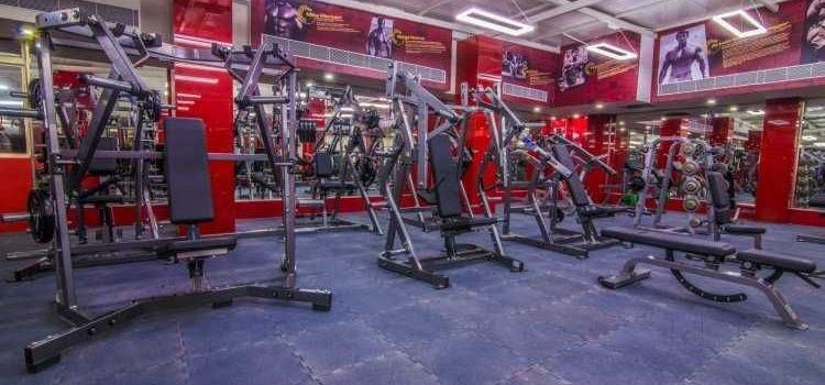 Hammer Fitness-HSR Layout-8238_lq5kng.jpg