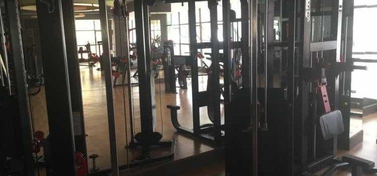 LF2 Fitness-Adugodi-8348_bdvejg.jpg