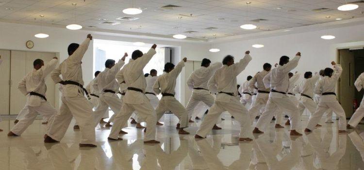 Shotokan Karate Academy of India-Goregaon East-8527_at4v90.jpg