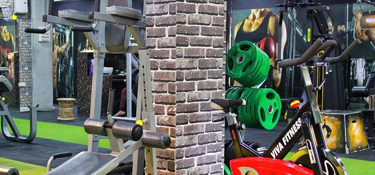 Spartan Elite Fitness Arena-Jodhpur Park-11361_v9bs3t.png
