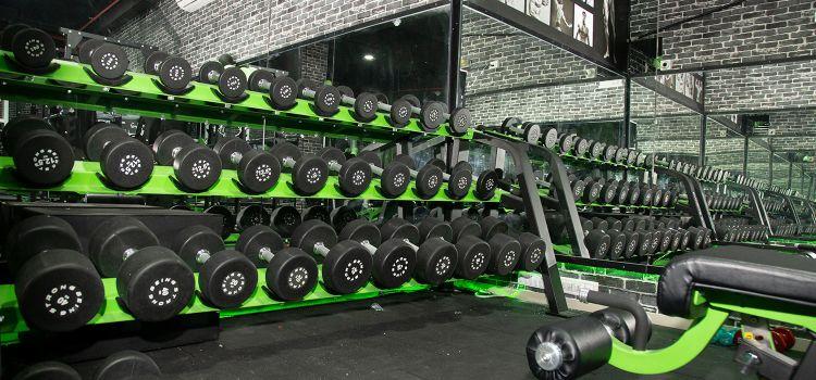 Muscle Factory Gym and Sports-Dahisar East-11609_ctegdv.jpg